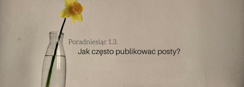 jak czesto pisac i publikowac posty - poradniesiac 1.3.